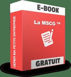 un e-book gratuit qui présente les règles fondamentales de comptabilité et de gestion de la Méthode Simplifiée de Comptabilité et de Gestion